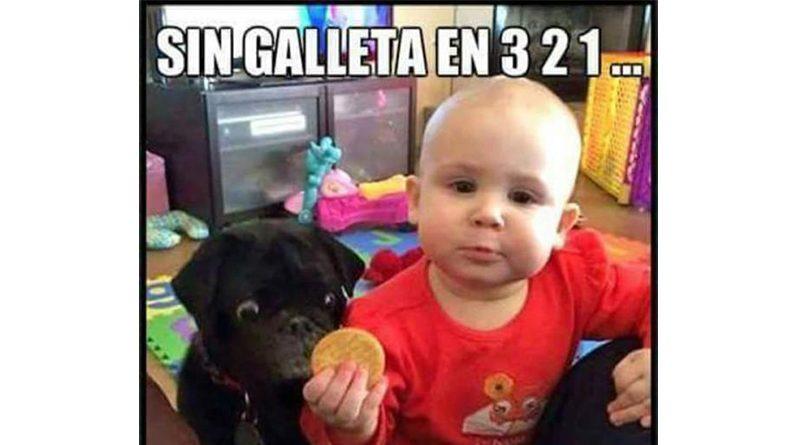 Bebé sosteniendo una galleta rente a su perro