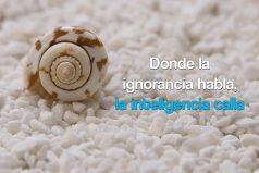 Donde la ignorancia habla, la inteligencia calla