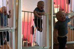 ¡Increíble! El sorprendente bebé que escapa de su habitación. ¡No hay reja que no pueda escalar!