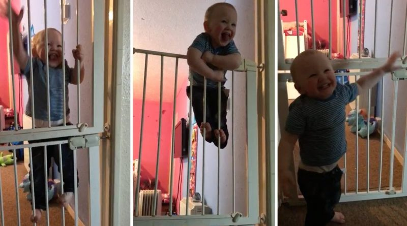 Houdini-Baby-Makes-Great-Escape-From-Gate