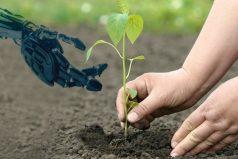 Crean un árbol artificial que genera electricidad, ¡salvar al planeta es una prioridad!