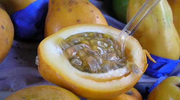 La pulpa de maracuyá tiene propiedades contra el cáncer de colon