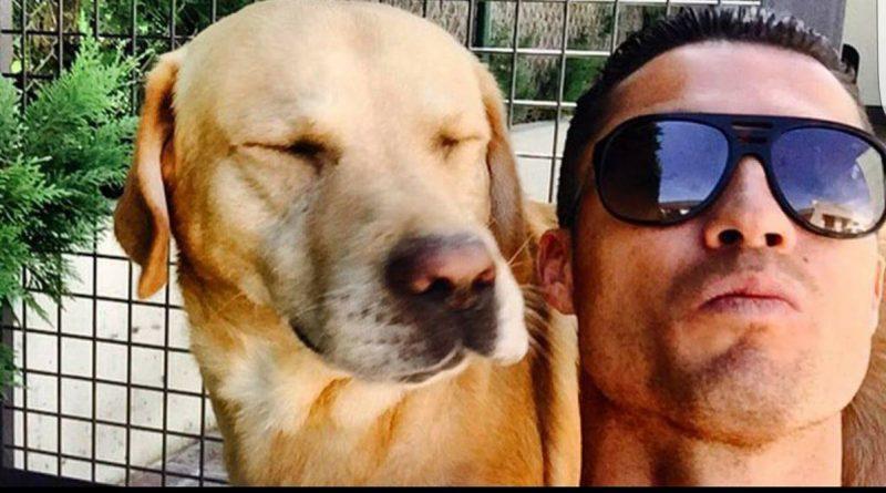 Cristiano Ronaldo salva la vida de 80 perros ¡Una gran obra!