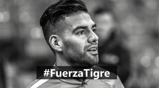 Fuerza 'Tigre' la Selección te necesita. ¡44 millones de corazones te apoyan!