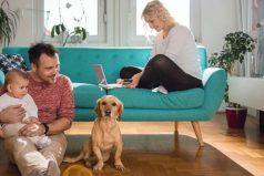 Ten esto en cuenta si quieres tener una mascota en tu hogar