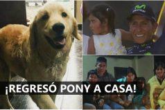 Estamos felices por el regreso de la perrita 'Pony' a la familia Quintana