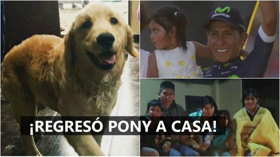Estamos felices por el regreso de 'Pony' a la familia Quintana