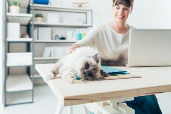 5 escritorios que vas a AMAR si trabajas desde la casa