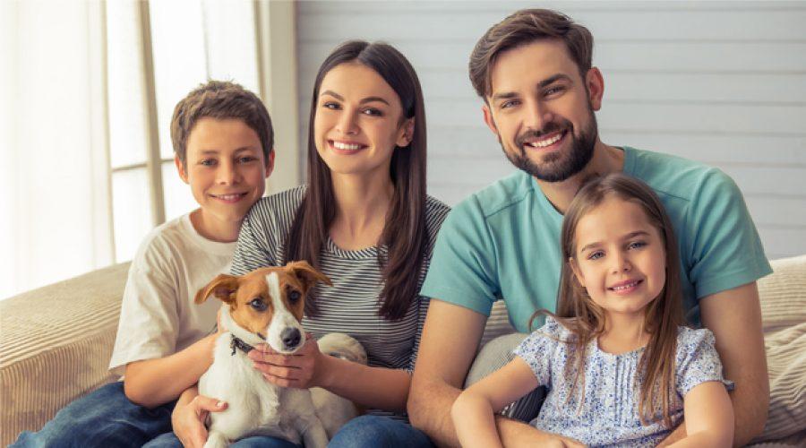 Por el arriendo o compra de una casa, ¡te puedes llevar un perro!