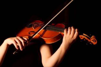 ¿Amas la música? esta información es de tu interés; ¡te encantará!
