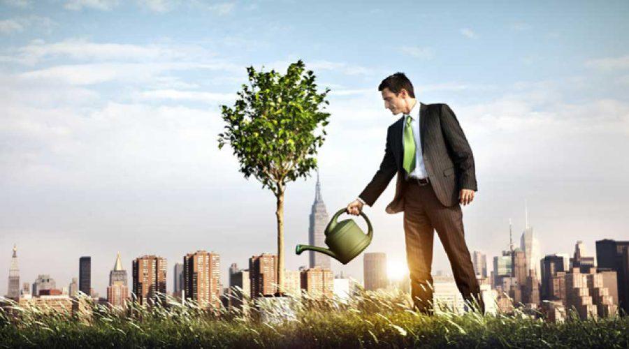 Emprendimiento social, empresas que trabajan para solucionar los problemas de la sociedad