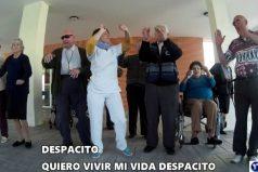 'Despacito', la parodia de la canción de Luis Fonsi que te sacará más de una cana. ¡Por que la risa no tiene edad!