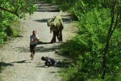 ¡Jajaja! Una broma de otra era… jurásica. ¡Lo que logras con un buen disfraz de dinosaurio!