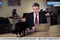 A Nil Ushakóv, alcalde de Riga (Letonia), lo interrumpió un gato durante una entrevista. ¿Cómo crees que reaccionó?