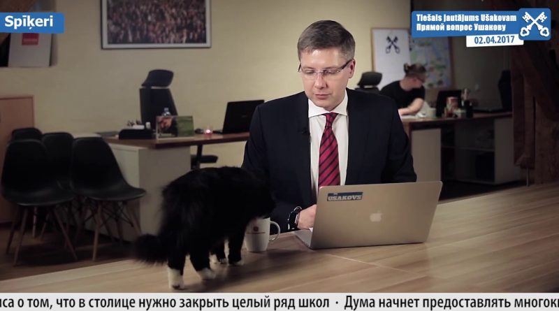 Un-gato-se-cuela-en-la-intervención-de-un-alcalde-y-bebe-de-su-taza