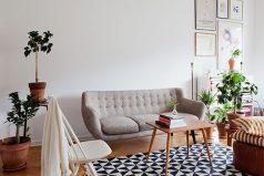5 plantas que puedes tener en tu casa o apartamento para mejorar el ambiente