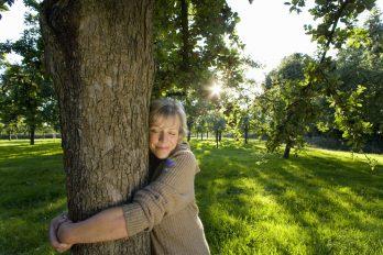 Colombia, el segundo país del mundo con más especies de árboles. ¡Abrázalos y cuídalos!
