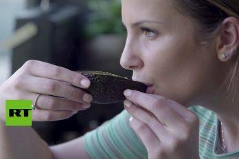 ¿Es broma? El avo-latte's o la forma más extraña de tomarse un café… ¡En una cáscara de aguacate!