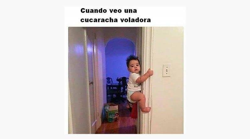 Bebé subiendo una pared