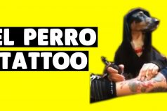 ¡Jajaja! El perro tatuador, la parodia que arrasa en Internet. ¿Te arriesgarías a dejarte hacer un tatuaje de él?