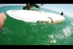 ¡No creerás lo que le pasó a este surfista! Un calamar gigante decidió 'darle una mano'. ¿Qué habrías hecho en su lugar?