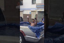¡Wow! Este hombre sí sabe sacarle una sonrisa a la vida: convirtió el platón de su camioneta… ¡En una piscina!