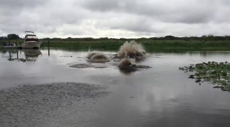St.-Johns-river-Thalassophobia