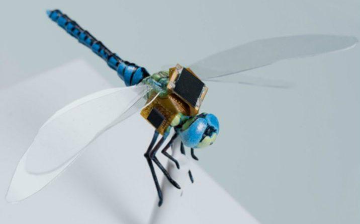 Conoce el dron más pequeño del mundo, ¡está en una libélula!