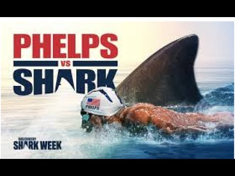Phelps-VS-Shark-Full-Race