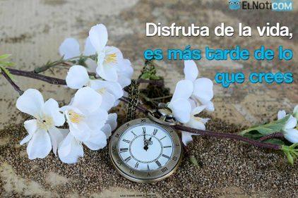 Disfruta de la vida, es más tarde de lo que crees