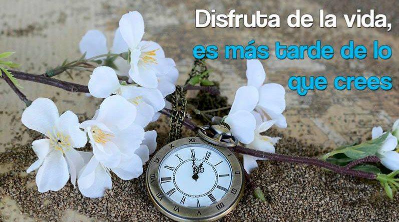Reloj con flores blancas