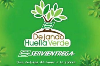 Una entrega de amor a la tierra #Dejandohuellaverde