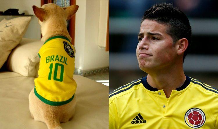 """El """"jugador número 12"""" de Brasil hizo su trabajo"""