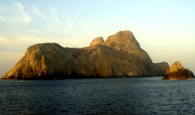 Ahora Malpelo es un santuario de flora y fauna. ¡Refugio oceánico global!
