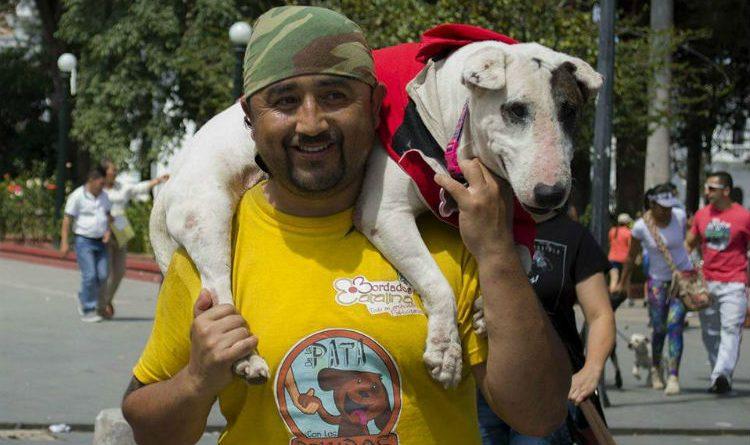 ¿Por qué este hombre camina de Pasto a Bogotá con su perro? ¡La respuesta es hermosa!