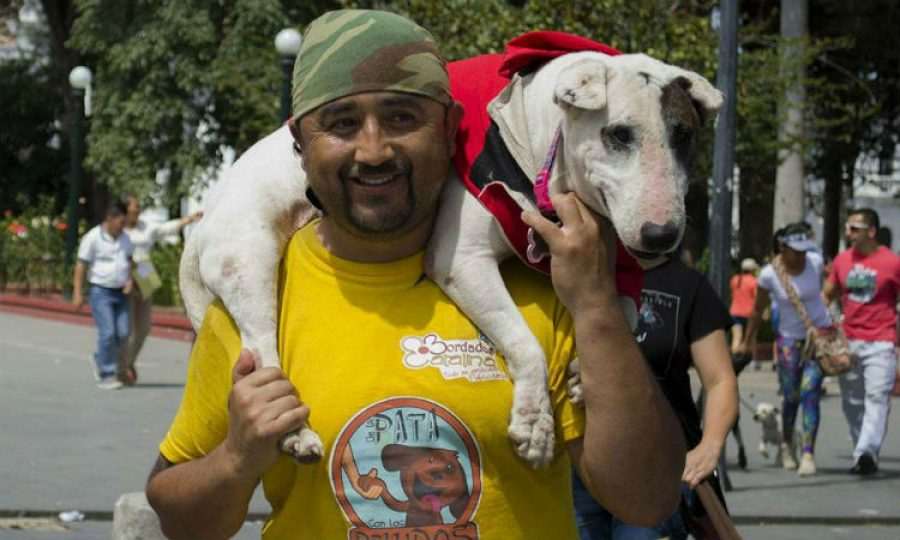¿Por qué este hombre camina de Pasto a Bogotá con su perra ciega a cuestas? ¡La respuesta es hermosa!