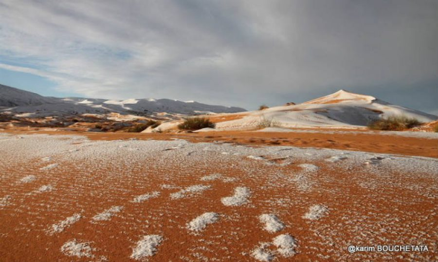 ¿Es normal que haya nevado en el desierto del Sáhara? ¡Las imágenes son hermosas!