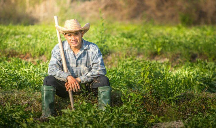 Las tres grandes propuestas que quieren convertir a Colombia en un lugar mejor
