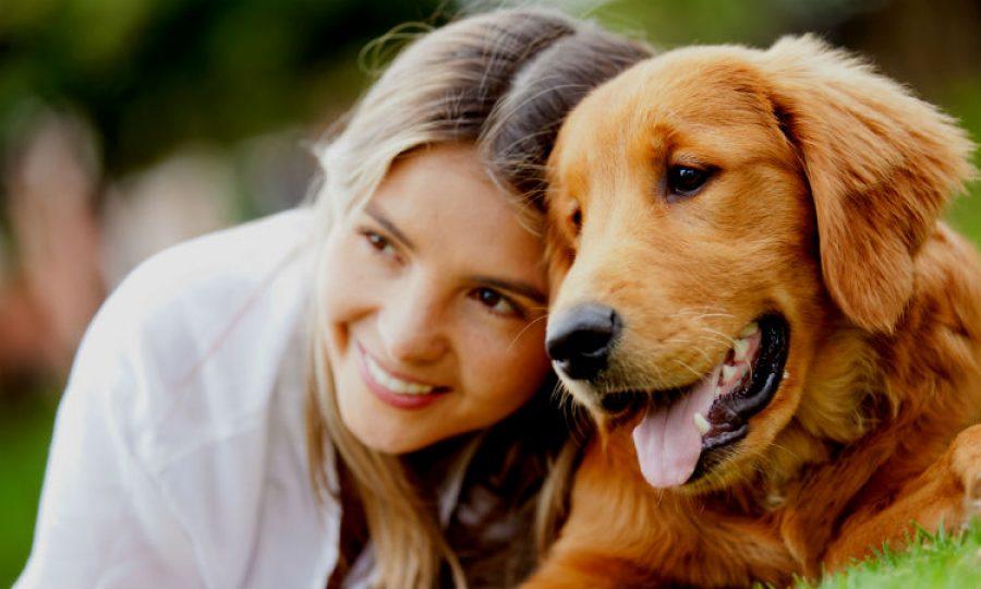 Señales para saber si tu perro es feliz, ¡recompensa su lealtad con este premio!