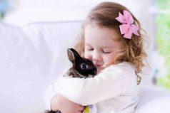 Mascotas ideales para niños. ¡Son increíbles y hermosas!