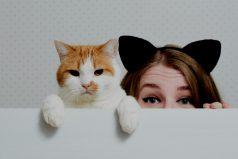 ¿Conoces bien a tu gato? ¡Asómbrate!