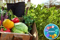Definida la frontera agrícola, en donde el 35% del territorio colombiano impulsará la producción de alimentos