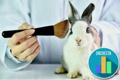 Quieren prohibir en Colombia las pruebas cosméticas en animales ¿Estás de acuerdo?