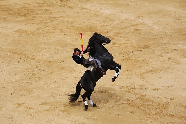 Corte Constitucional revive las corridas de toros en Colombia