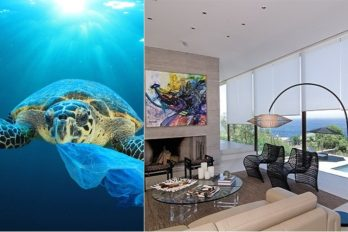 Contribuye con el cuidado del medio ambiente mientras decoras tu casa con mucho estilo