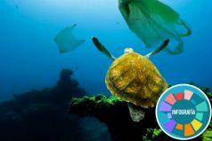 Según un estudio, Cola-Cola, Pepsi y Nestlé son las marcas que más contaminan los océanos