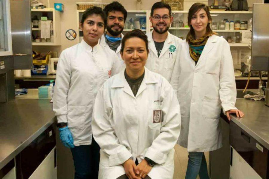 En cabeza de investigadora mexicana, científicos logran eliminar Virus del Papiloma Humano en 29 mujeres