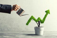 ¿Buscas en qué invertir tu capital? Conoce esta alternativa que te ayudará a ganar mientras ahorras