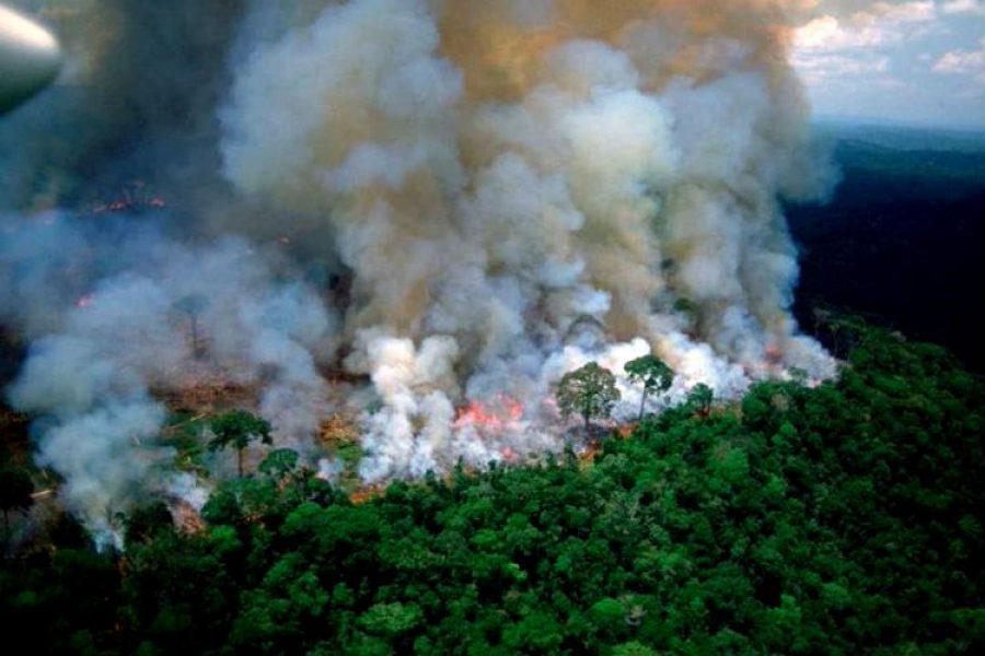 #PrayForAmazonia es el llamado al mundo para evitar la pérdida de un invaluable tesoro