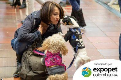 ¿Te consideras un PetLover? Cinco actividades imperdibles y mucho más en Expopet